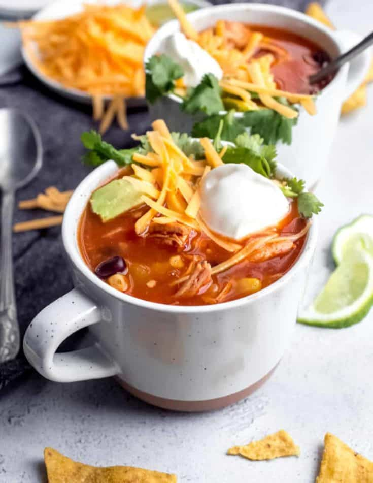 Tortilla Soup is a hearty meal that will keep you warm this winter. Top it with your favorite tortilla chips and taco toppings for a bowl of soup you'll really crave!