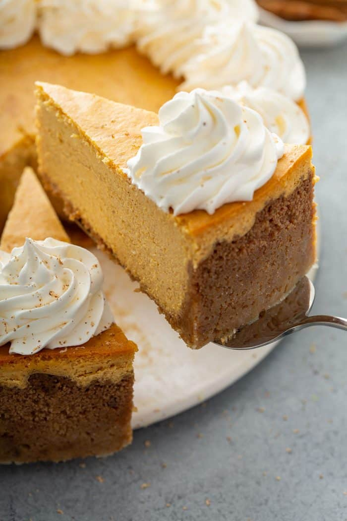 Cake server lifting up a slice of pumpkin cheesecake