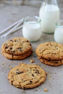 pistachio cookies with dark chocolate covered pomegranate