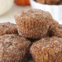 Gluten-Free Pumpkin Donut Holes will make your Fall breakfast extra special. Great for the weekday or weekend brunch.