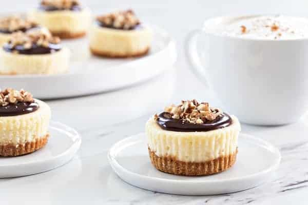 Mini Chocolate Pecan Cheesecakes will cure any nutty chocolate craving you've got going on. So delicious!