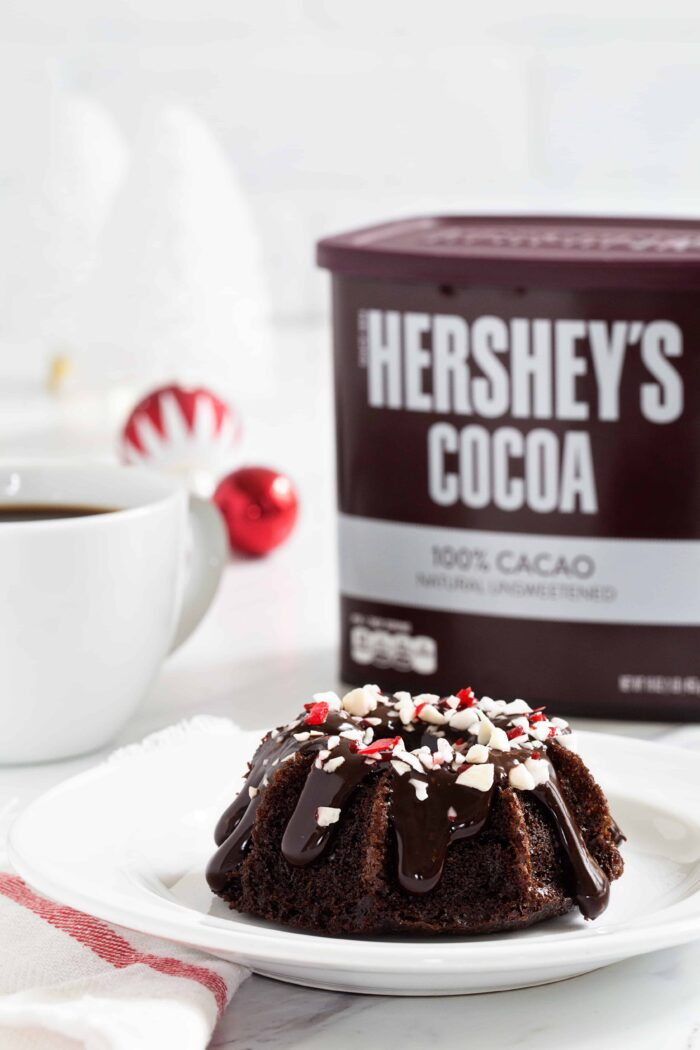 Chocolate Peppermint Mini Bundt Cakes are a fun and festive dessert for any holiday party. You'll love these!