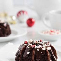 Chocolate Peppermint Mini Bundt Cakes