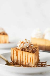 Pumpkin Praline Cheesecake combines sweet praline pecans with creamy pumpkin cheesecake and a gingersnap crust.