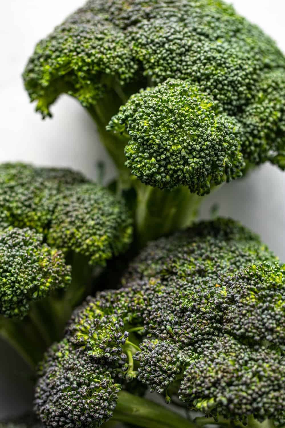 Three heads of broccoli on a white background