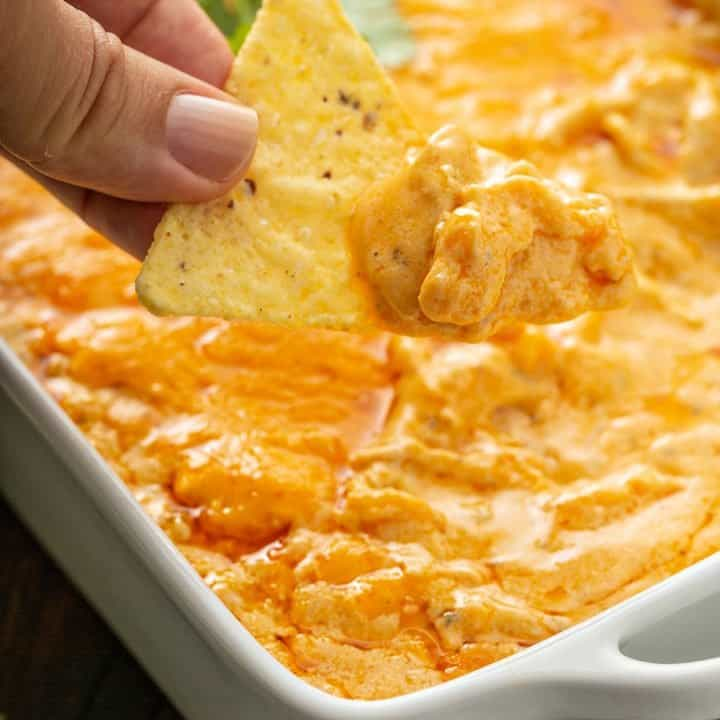 Buffalo Chicken Dip My Baking Addiction