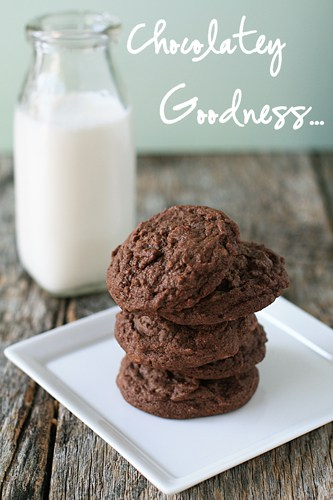Post image for Chocolate Peanut Butter Cookies