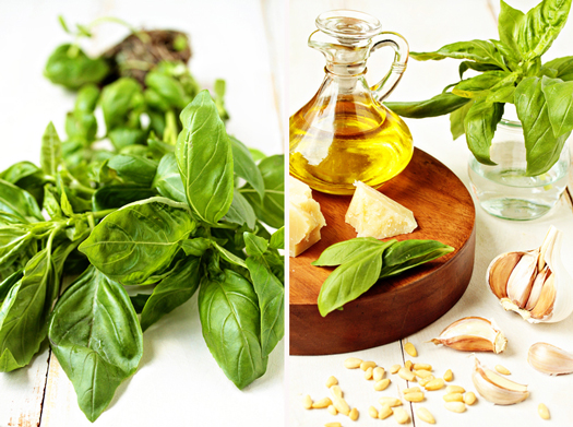 Fresh Basil Pesto Recipe | My Baking Addiction